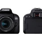 Canon, nuove reflex digitali EOS 800D ed EOS 77D