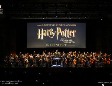 Harry Potter e la Camera dei Segreti foto © Francesca Di Stefano