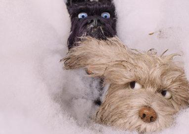 L'Isola dei Cani di Wes Anderson