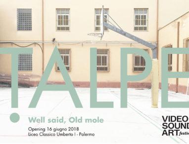 Talpe @ Video Sound Art 2018 Palermo