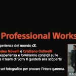 Sony Professional Workshop