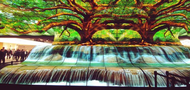 Schermi OLED LG, una cascata di colori
