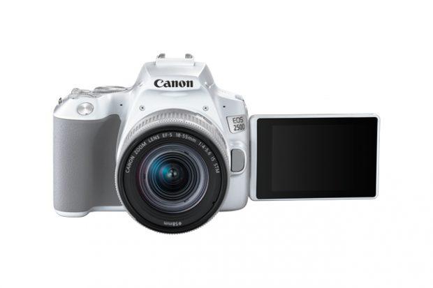 Canon EOS 250D, la reflex per chi inizia