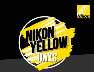 Nikon Yellow Days