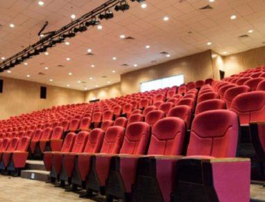 Associazione Festival Italiani di Cinema