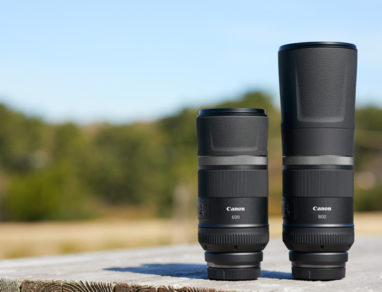 Canon RF 600mm F11 IS STM Canon RF 800mm F11 IS STM