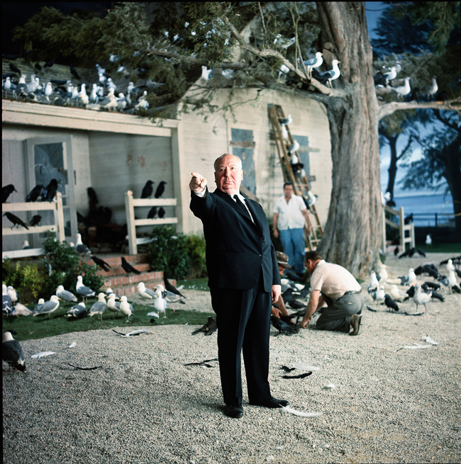 Alfred Hitchcock, Uccelli, 1963 © Universal Pictures